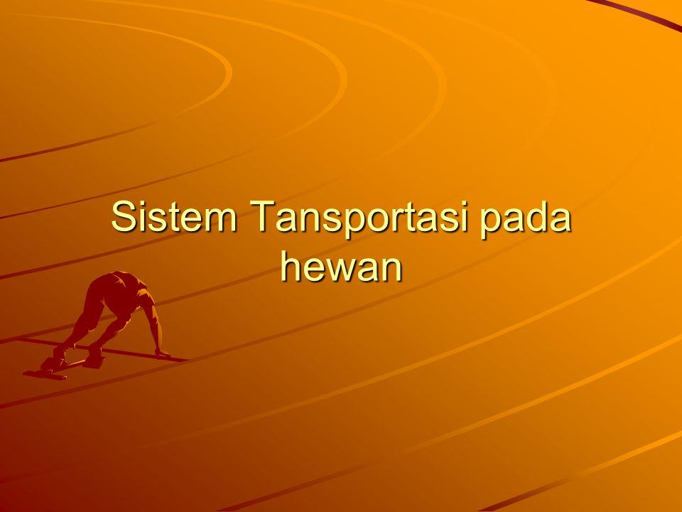 Sistem Tansportasi pada hewan