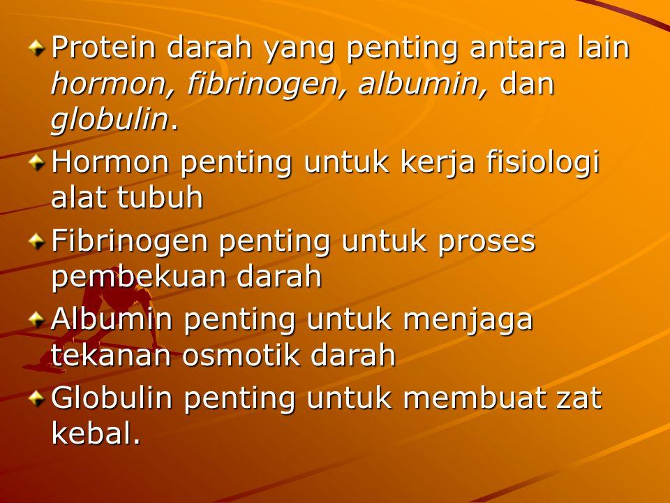 Protein darah yang penting antara lain hormon, fibrinogen, albumin, dan globulin. Hormon penting untuk kerja fisiologi alat tubuh Fibrinogen penting u