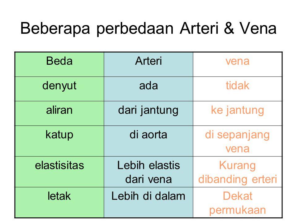 Beberapa perbedaan Arteri & Vena BedaArterivena denyutadatidak alirandari jantungke jantung katupdi aortadi sepanjang vena elastisitasLebih elastis da
