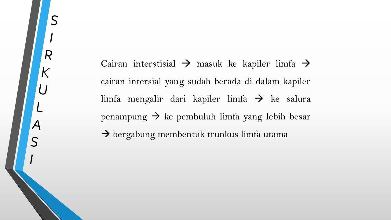 SIRKULASISIRKULASI Cairan interstisial  masuk ke kapiler limfa  cairan intersial yang sudah berada di dalam kapiler limfa mengalir dari kapiler limf