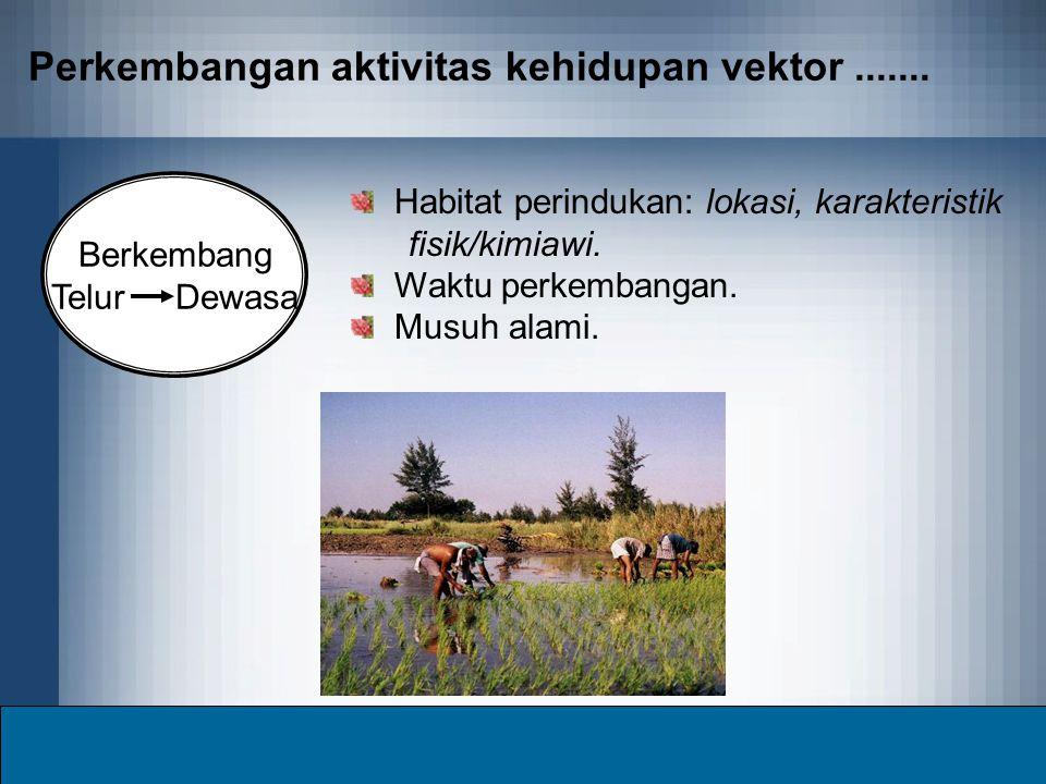Perkembangan aktivitas kehidupan vektor....... Berkembang Telur Dewasa Habitat perindukan: lokasi, karakteristik fisik/kimiawi. Waktu perkembangan. Mu