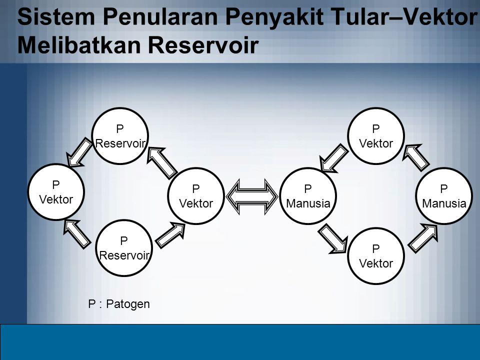 Sistem Penularan Penyakit Tular–Vektor Melibatkan Reservoir P Vektor P Vektor P Manusia P Vektor P Manusia P Vektor P Reservoir P Reservoir P : Patoge