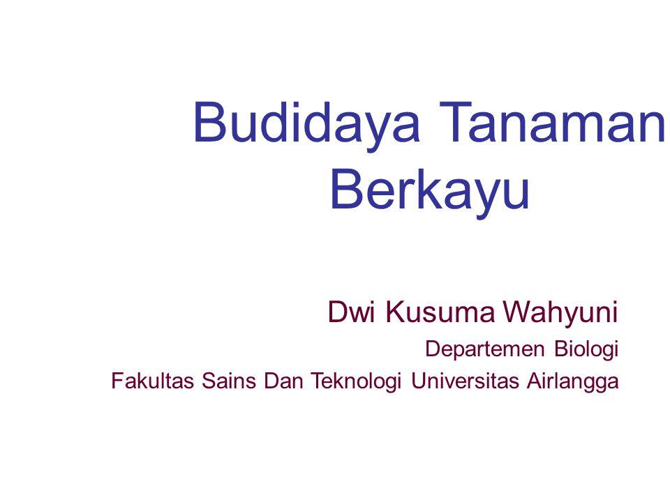 Budidaya Tanaman Berkayu Dwi Kusuma Wahyuni Departemen Biologi Fakultas Sains Dan Teknologi Universitas Airlangga