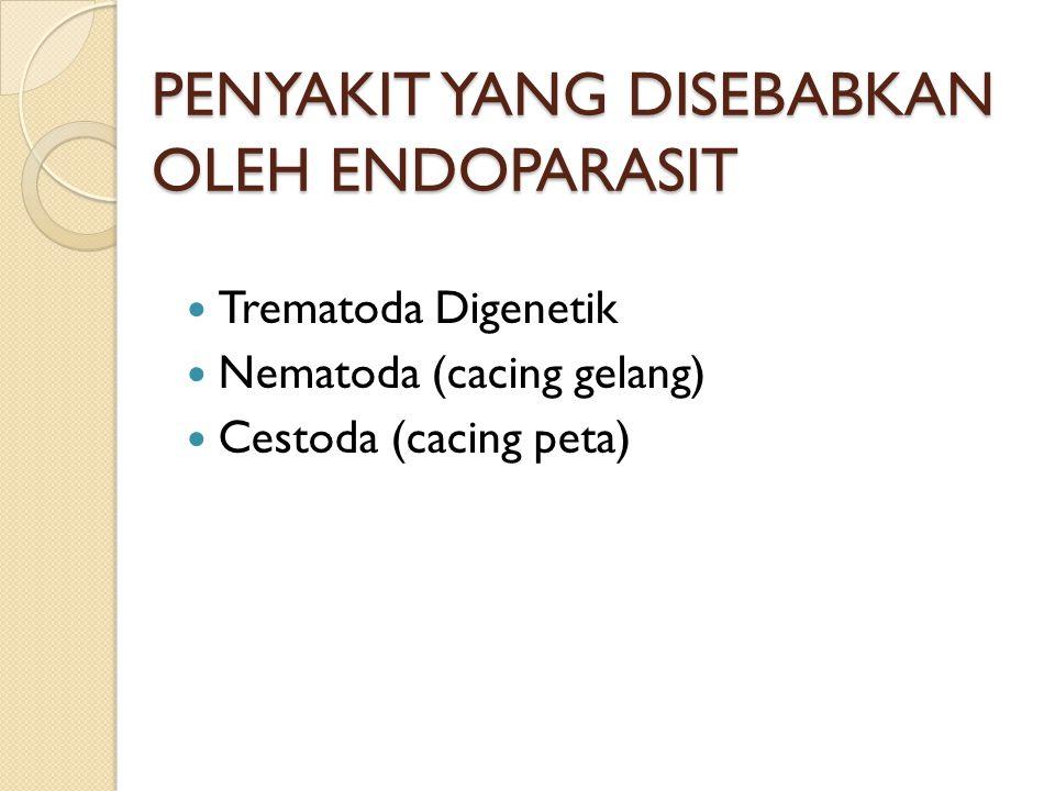 PENYAKIT YANG DISEBABKAN OLEH ENDOPARASIT Trematoda Digenetik Nematoda (cacing gelang) Cestoda (cacing peta)