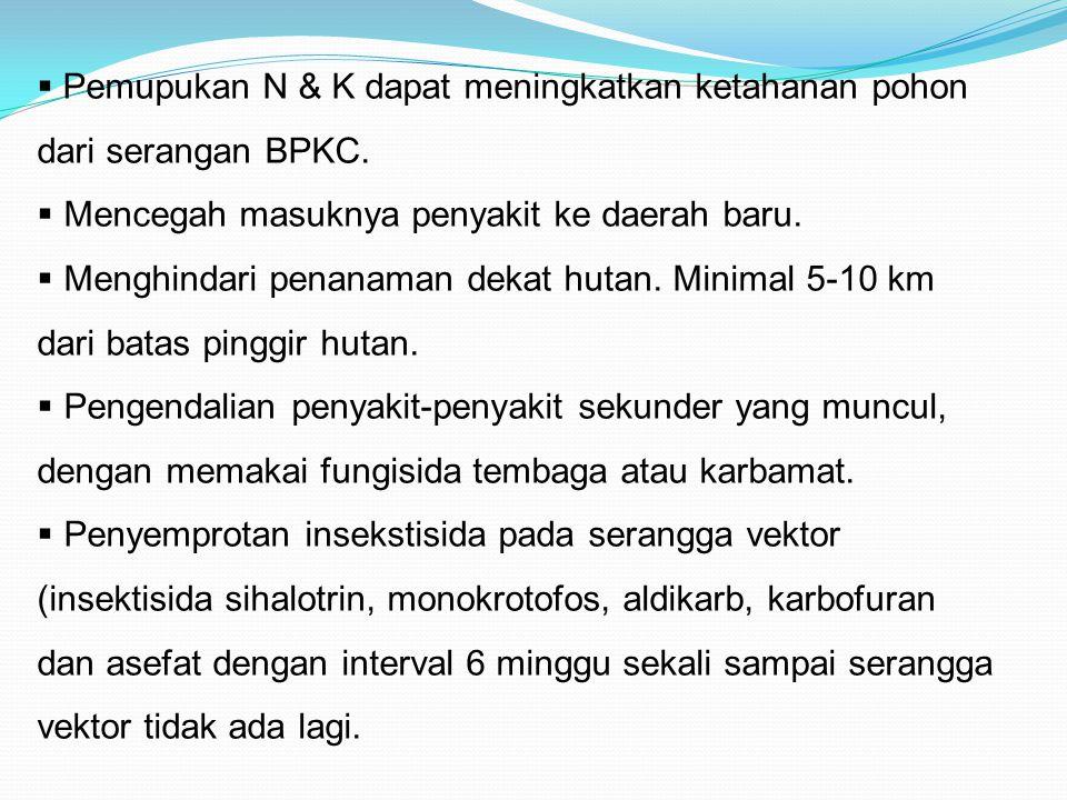  Pemupukan N & K dapat meningkatkan ketahanan pohon dari serangan BPKC.  Mencegah masuknya penyakit ke daerah baru.  Menghindari penanaman dekat hu