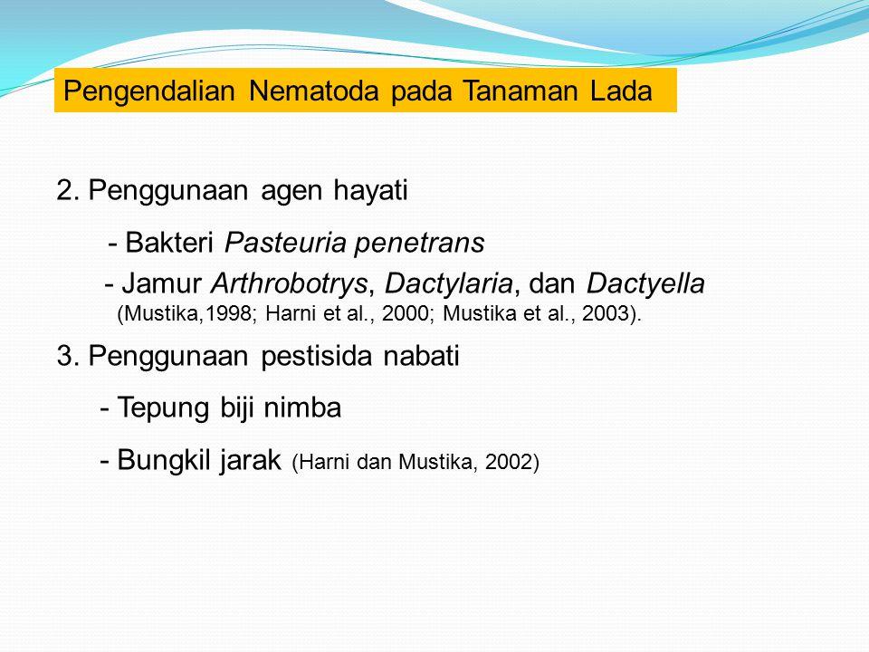Pengendalian Nematoda pada Tanaman Lada 2. Penggunaan agen hayati - Bakteri Pasteuria penetrans - Jamur Arthrobotrys, Dactylaria, dan Dactyella (Musti