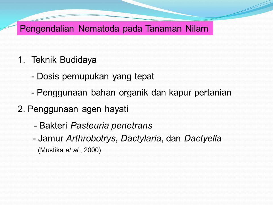 Pengendalian Nematoda pada Tanaman Nilam 1.Teknik Budidaya - Dosis pemupukan yang tepat - Penggunaan bahan organik dan kapur pertanian 2. Penggunaan a