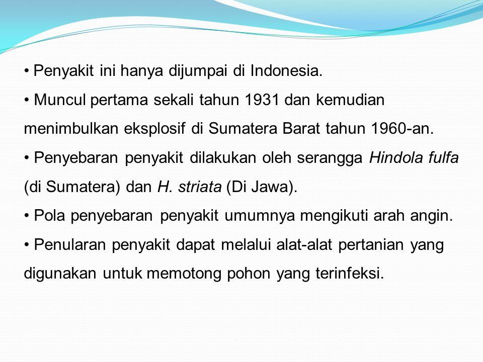 Muncul pertama sekali tahun 1931 dan kemudian menimbulkan eksplosif di Sumatera Barat tahun 1960-an. Penyebaran penyakit dilakukan oleh serangga Hindo