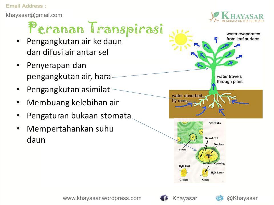 Peranan Transpirasi Pengangkutan air ke daun dan difusi air antar sel Penyerapan dan pengangkutan air, hara Pengangkutan asimilat Membuang kelebihan air Pengaturan bukaan stomata Mempertahankan suhu daun