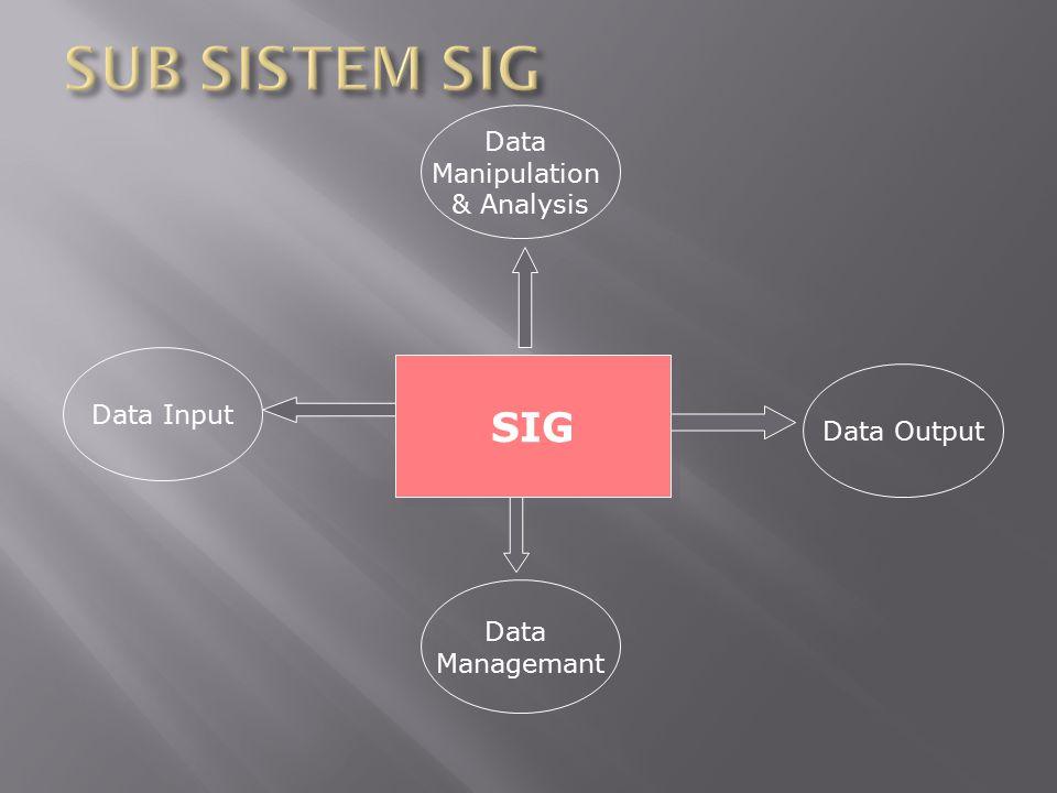 Data Manipulation & Analysis SIG Data Managemant Data Output Data Input