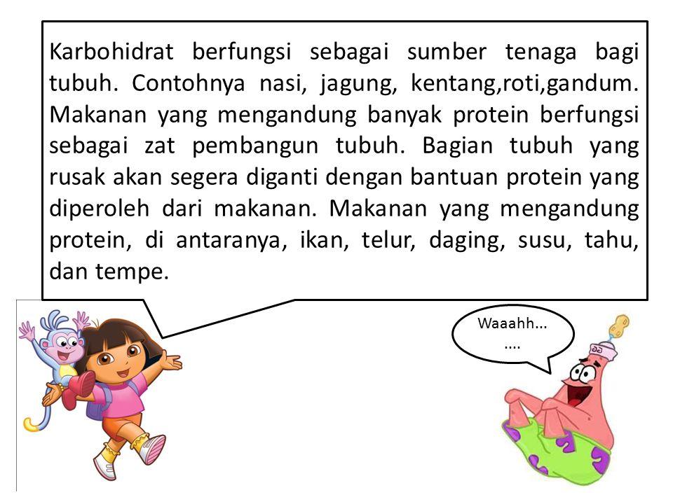 Karbohidrat berfungsi sebagai sumber tenaga bagi tubuh. Contohnya nasi, jagung, kentang,roti,gandum. Makanan yang mengandung banyak protein berfungsi