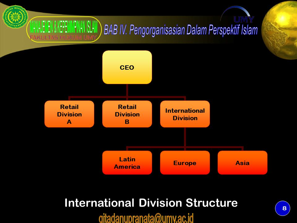 8 CEO Retail Division A Retail Division B International Division Latin America EuropeAsia International Division Structure