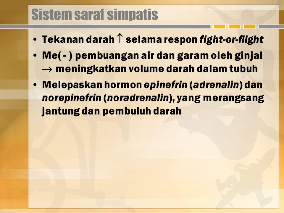 Sistem saraf simpatis Tekanan darah  selama respon fight-or-flight Me( - ) pembuangan air dan garam oleh ginjal  meningkatkan volume darah dalam tubuh Melepaskan hormon epinefrin (adrenalin) dan norepinefrin (noradrenalin), yang merangsang jantung dan pembuluh darah