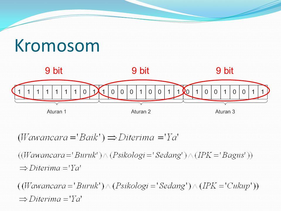 Kromosom 9 bit