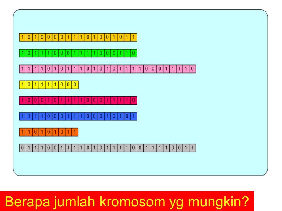 Berapa jumlah kromosom yg mungkin