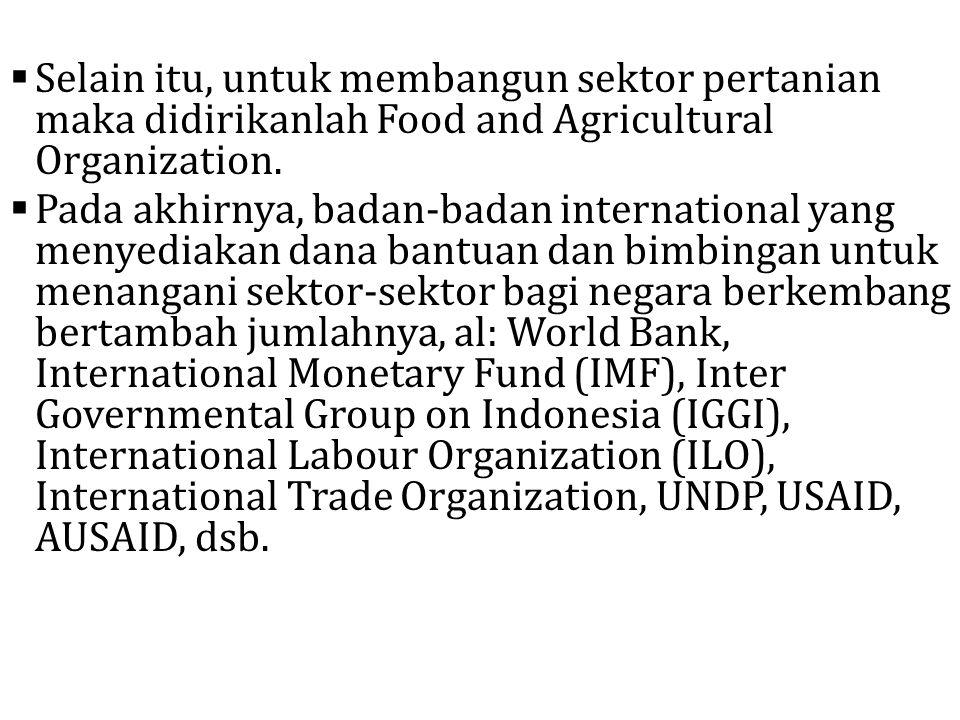  Selain itu, untuk membangun sektor pertanian maka didirikanlah Food and Agricultural Organization.  Pada akhirnya, badan-badan international yang m