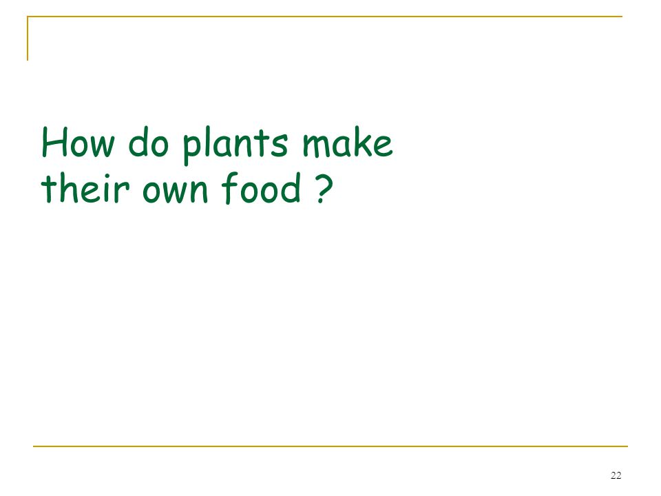 23 Making food Green plants are the only living things which can make their own food.