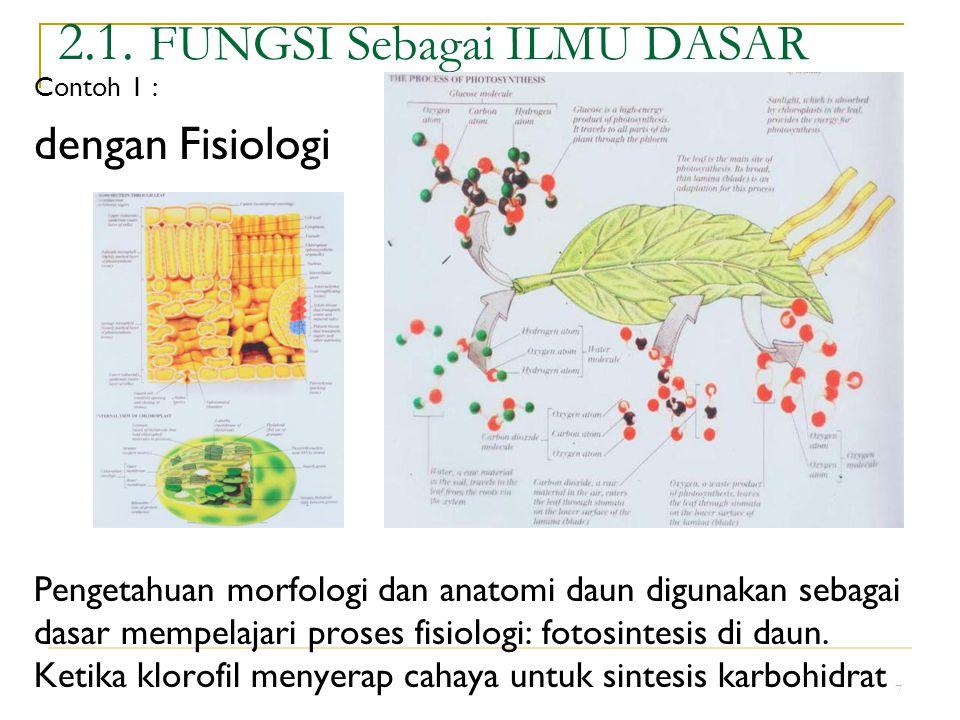 7 2.1. FUNGSI Sebagai ILMU DASAR Contoh 1 : dengan Fisiologi Pengetahuan morfologi dan anatomi daun digunakan sebagai dasar mempelajari proses fisiolo