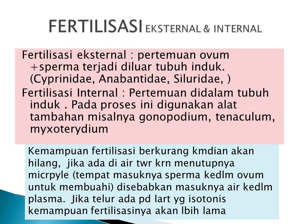 Fertilisasi eksternal : pertemuan ovum +sperma terjadi diluar tubuh induk. (Cyprinidae, Anabantidae, Siluridae, ) Fertilisasi Internal : Pertemuan did