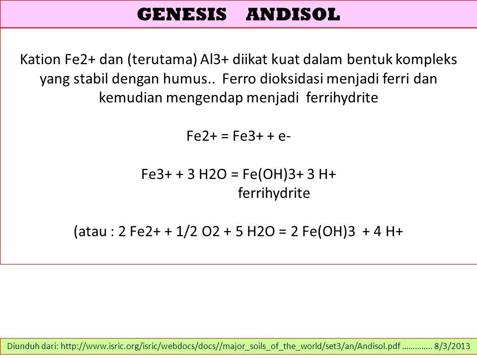 GENESIS ANDISOL Kation Fe2+ dan (terutama) Al3+ diikat kuat dalam bentuk kompleks yang stabil dengan humus.. Ferro dioksidasi menjadi ferri dan kemudi