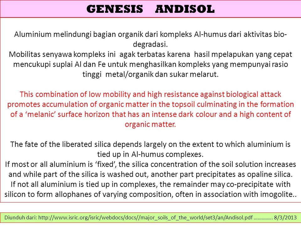GENESIS ANDISOL Aluminium melindungi bagian organik dari kompleks Al-humus dari aktivitas bio- degradasi. Mobilitas senyawa kompleks ini agak terbatas