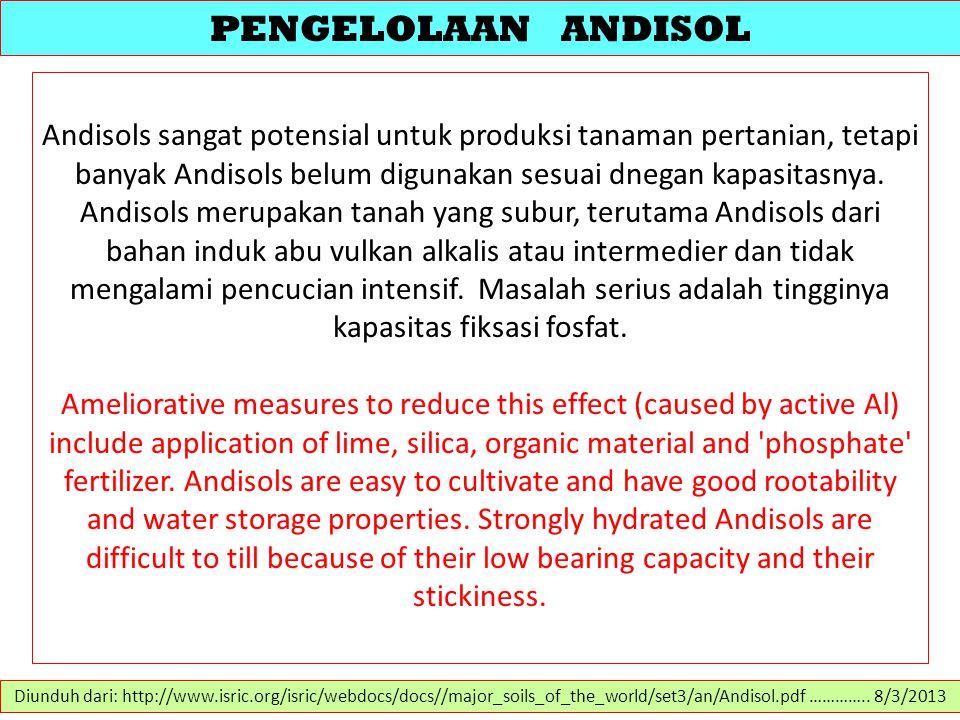 PENGELOLAAN ANDISOL Andisols sangat potensial untuk produksi tanaman pertanian, tetapi banyak Andisols belum digunakan sesuai dnegan kapasitasnya. And