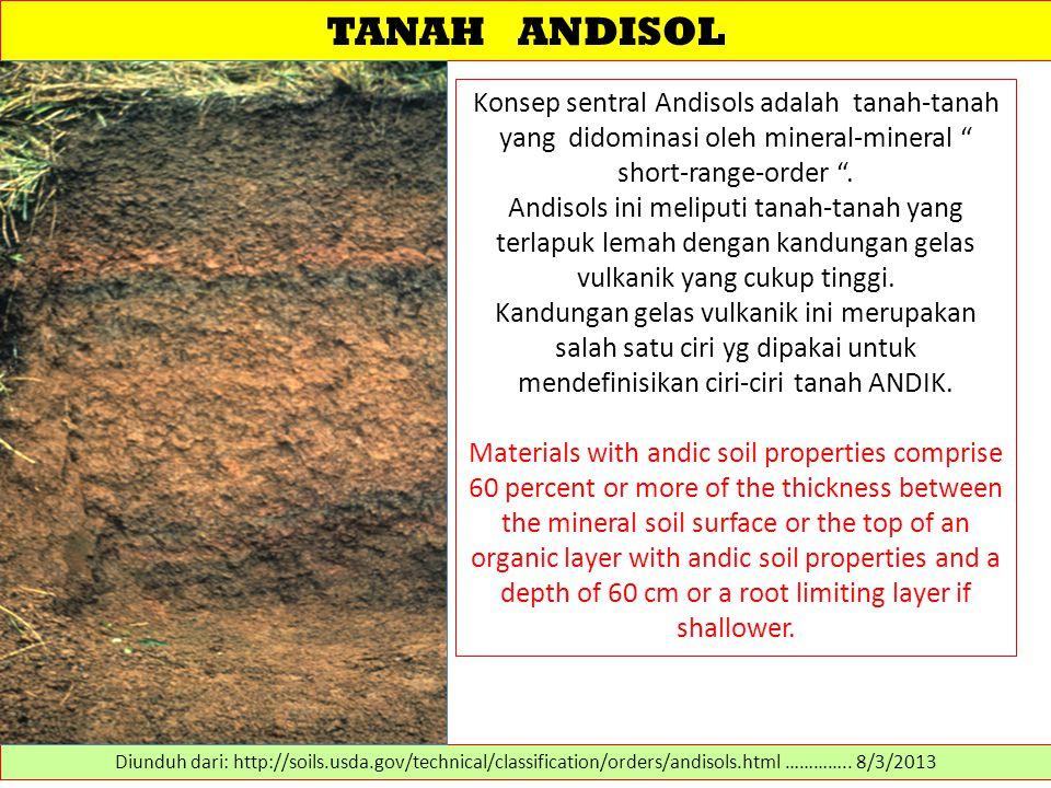 """TANAH ANDISOL Konsep sentral Andisols adalah tanah-tanah yang didominasi oleh mineral-mineral """" short-range-order """". Andisols ini meliputi tanah-tanah"""