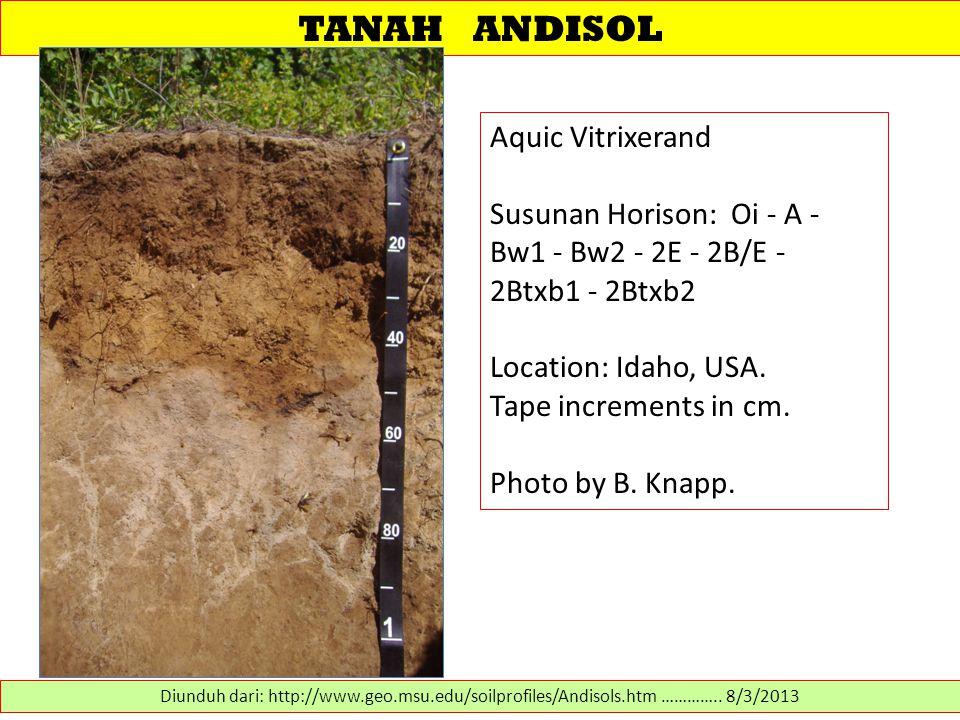 TANAH ANDISOL Aquic Vitrixerand Susunan Horison: Oi - A - Bw1 - Bw2 - 2E - 2B/E - 2Btxb1 - 2Btxb2 Location: Idaho, USA. Tape increments in cm. Photo b
