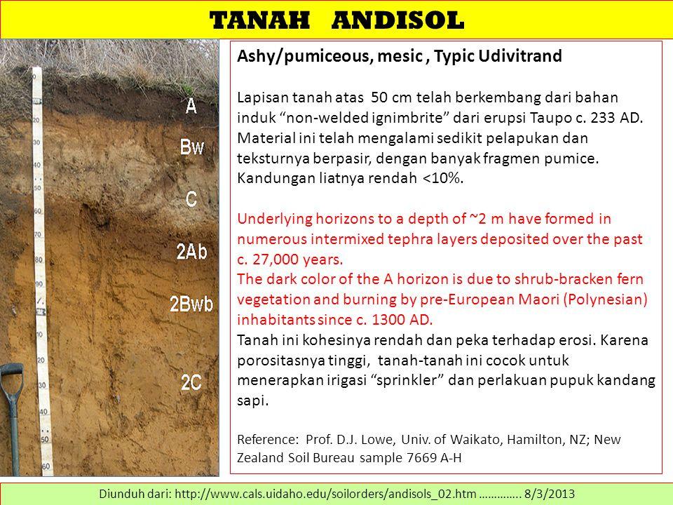 """TANAH ANDISOL Ashy/pumiceous, mesic, Typic Udivitrand Lapisan tanah atas 50 cm telah berkembang dari bahan induk """"non-welded ignimbrite"""" dari erupsi T"""