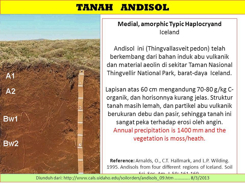 TANAH ANDISOL Medial, amorphic Typic Haplocryand Iceland Andisol ini (Thingvallasveit pedon) telah berkembang dari bahan induk abu vulkanik dan materi