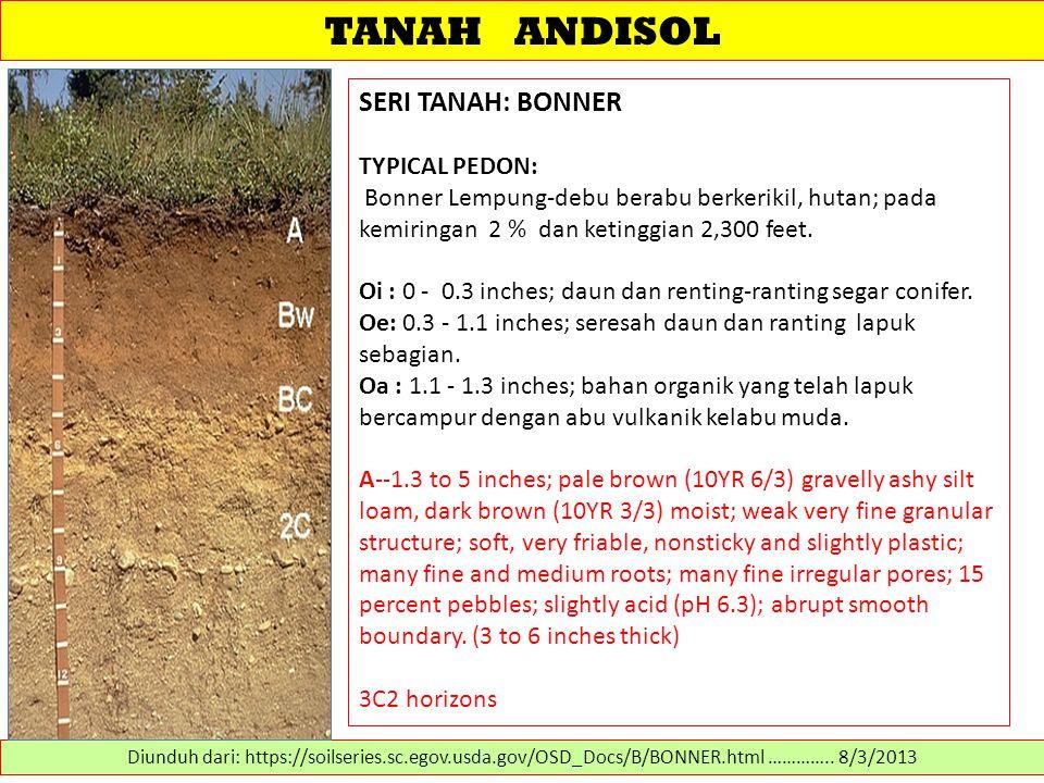 TANAH ANDISOL SERI TANAH: BONNER TYPICAL PEDON: Bonner Lempung-debu berabu berkerikil, hutan; pada kemiringan 2 % dan ketinggian 2,300 feet. Oi : 0 -
