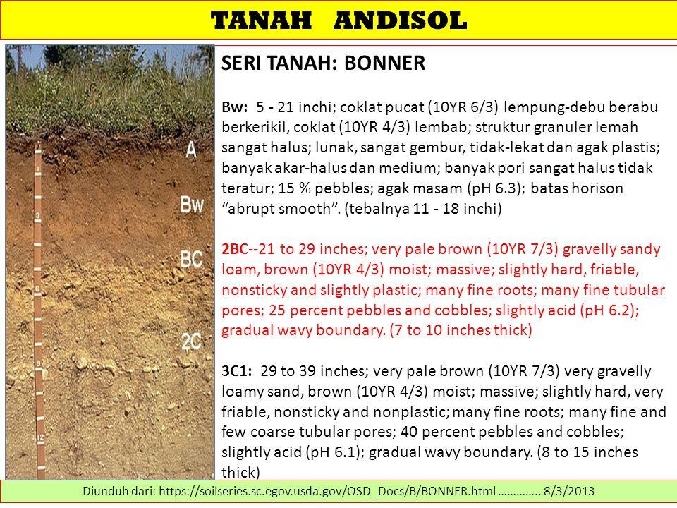 TANAH ANDISOL SERI TANAH: BONNER Bw: 5 - 21 inchi; coklat pucat (10YR 6/3) lempung-debu berabu berkerikil, coklat (10YR 4/3) lembab; struktur granuler