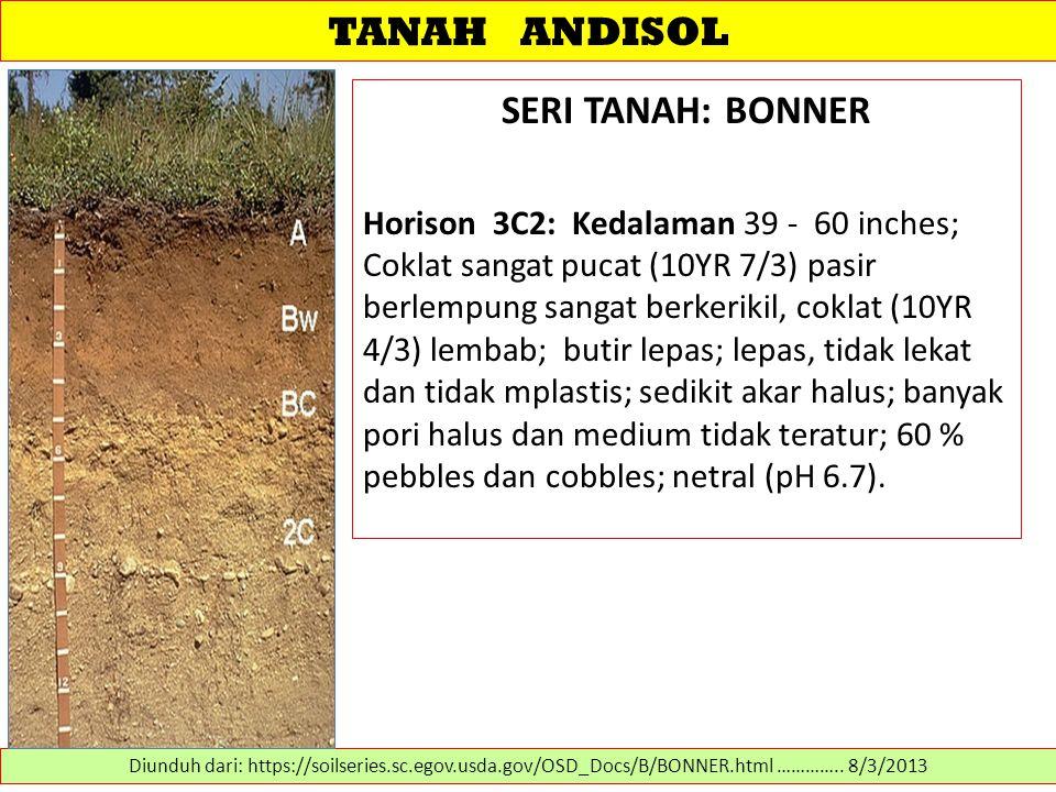 TANAH ANDISOL SERI TANAH: BONNER Horison 3C2: Kedalaman 39 - 60 inches; Coklat sangat pucat (10YR 7/3) pasir berlempung sangat berkerikil, coklat (10Y