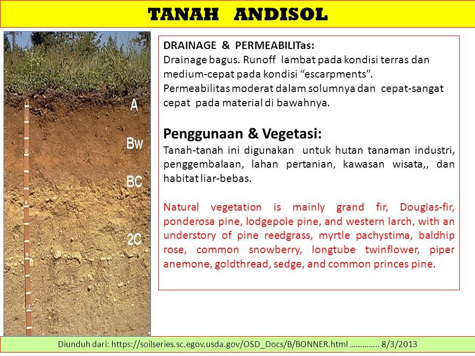 """TANAH ANDISOL DRAINAGE & PERMEABILITas: Drainage bagus. Runoff lambat pada kondisi terras dan medium-cepat pada kondisi """"escarpments"""". Permeabilitas m"""