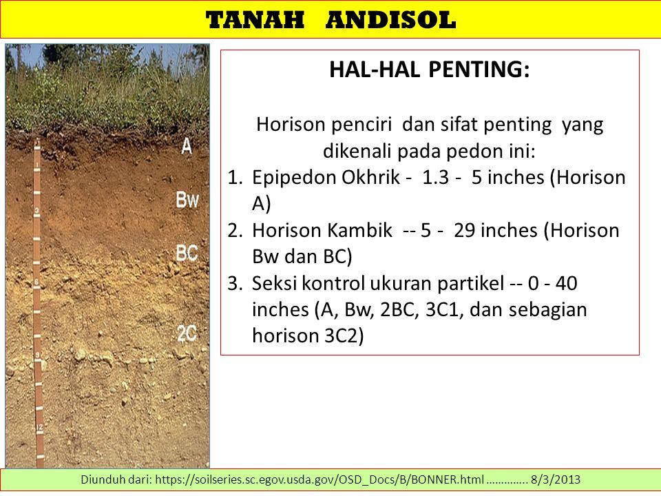 TANAH ANDISOL HAL-HAL PENTING: Horison penciri dan sifat penting yang dikenali pada pedon ini: 1.Epipedon Okhrik - 1.3 - 5 inches (Horison A) 2.Horiso