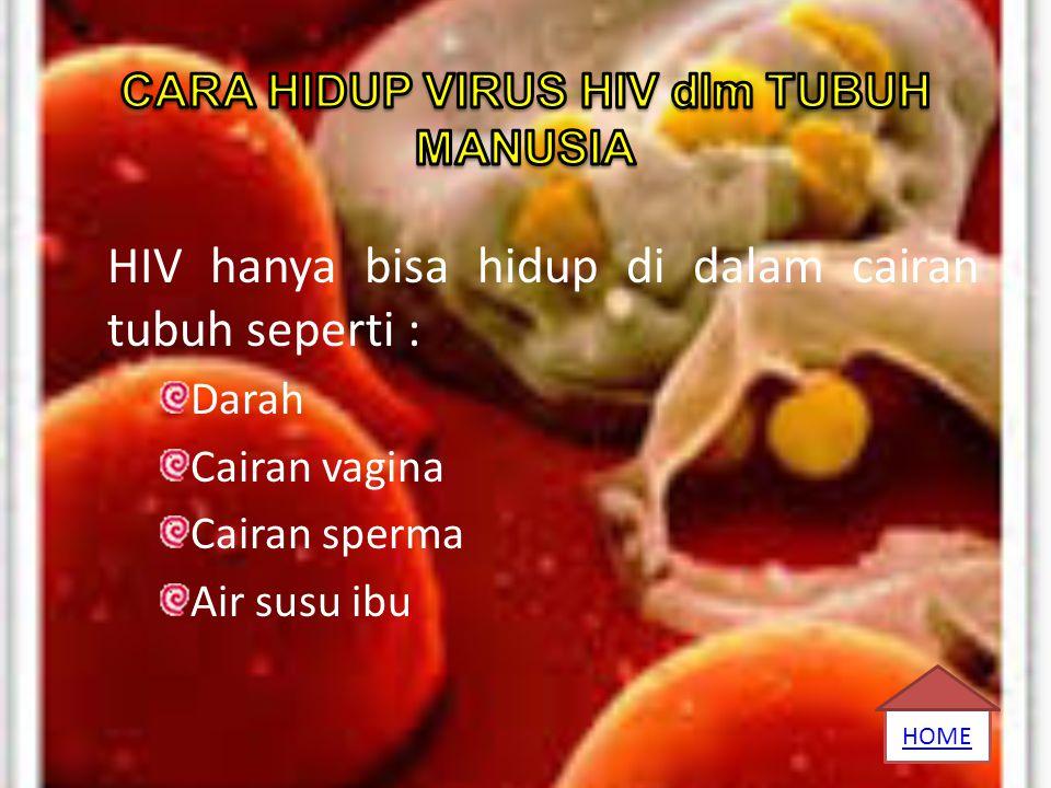 HIV hanya bisa hidup di dalam cairan tubuh seperti : Darah Cairan vagina Cairan sperma Air susu ibu HOME
