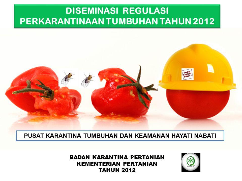 Salak dan Jambu Air diantara buah impor 4.
