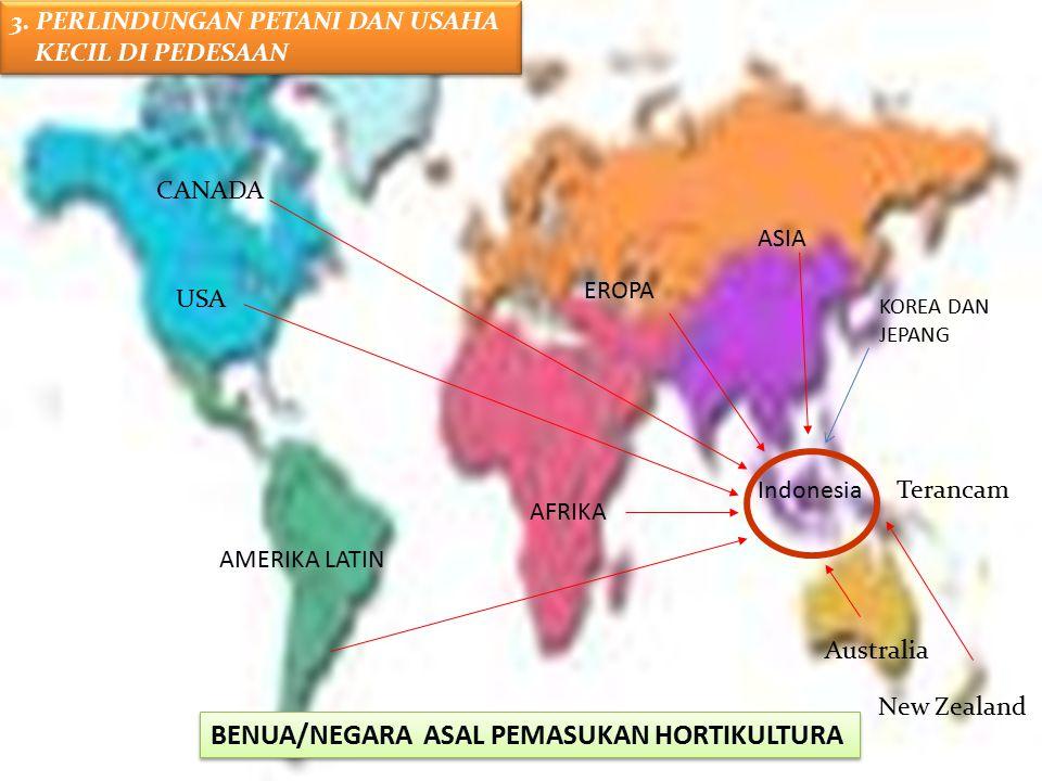 EROPA AMERIKA LATIN AFRIKA USA CANADA ASIA Terancam Australia New Zealand Indonesia BENUA/NEGARA ASAL PEMASUKAN HORTIKULTURA KOREA DAN JEPANG 3. PERLI