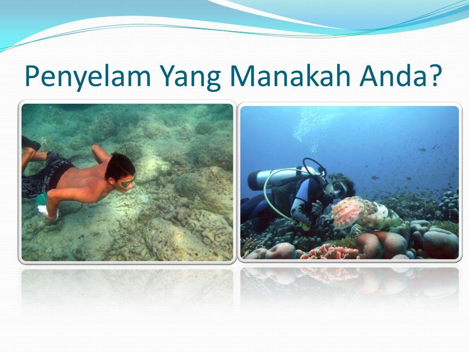 Ade Yamindago, S.Kel., MP., M.Sc Oktiyas Muzaky Luthfri, ST., M.Sc Citra Satrya Utama Dewi, S.Pi., M.Si M.