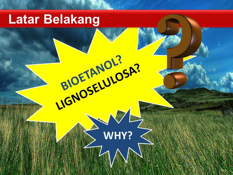 WHY? BIOETANOL? LIGNOSELULOSA? TEKNIK BIOPROSES -- FAKULTAS TEKNOLOGI PERTANIAN Latar Belakang