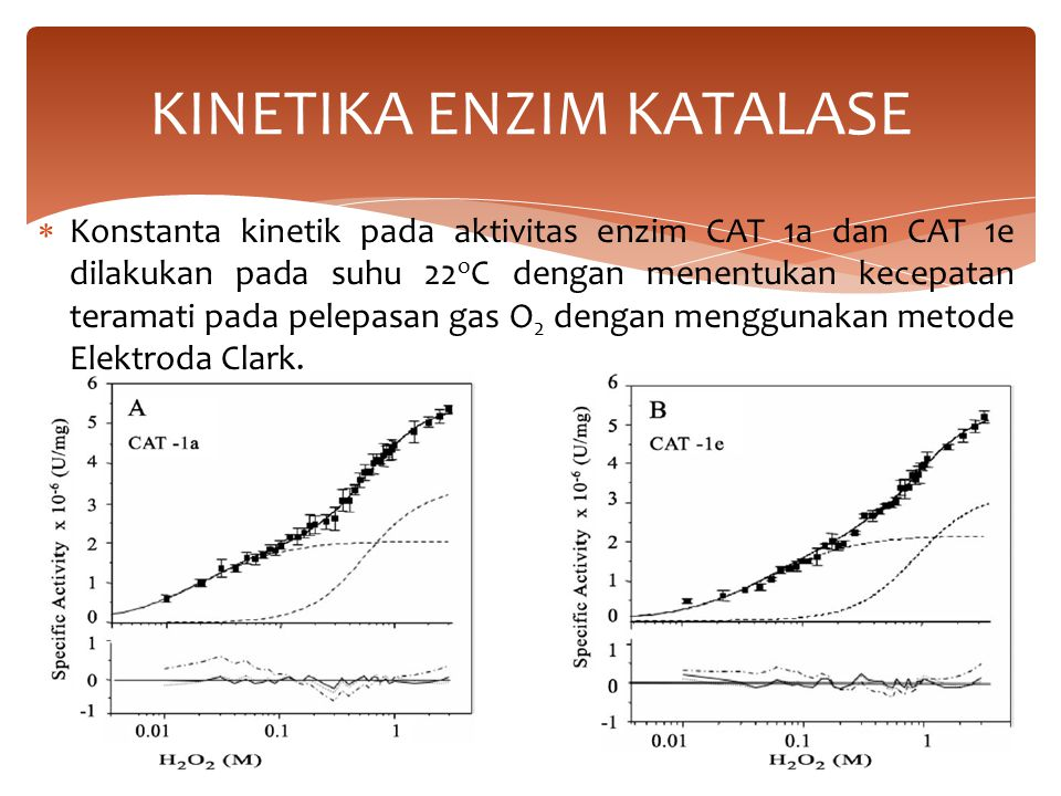  Konstanta kinetik pada aktivitas enzim CAT 1a dan CAT 1e dilakukan pada suhu 22 o C dengan menentukan kecepatan teramati pada pelepasan gas O 2 deng
