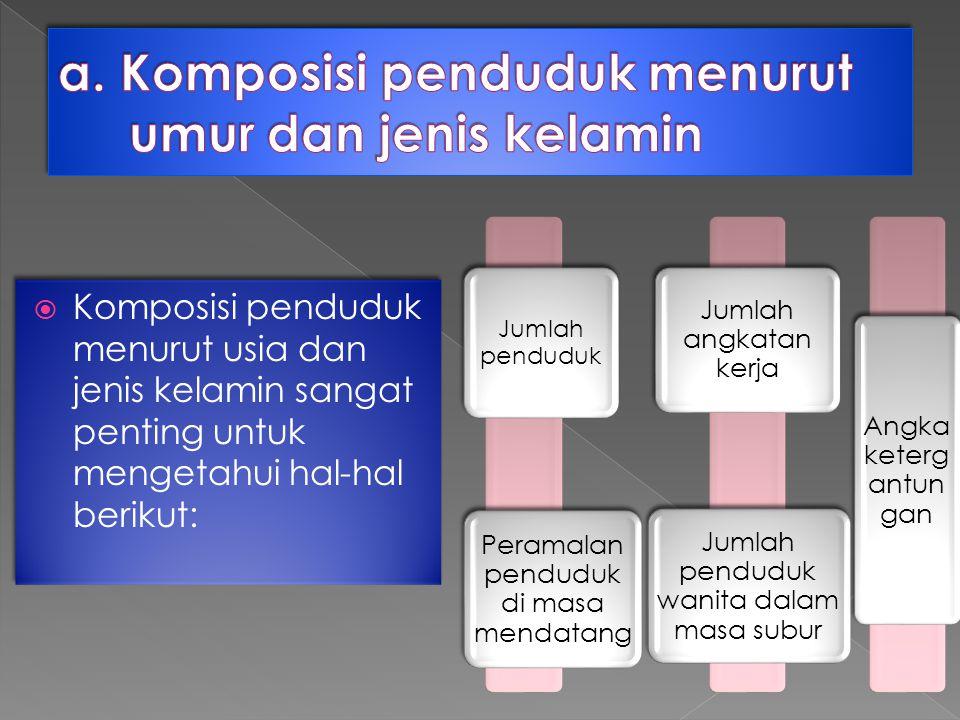  Komposisi penduduk menurut usia dan jenis kelamin sangat penting untuk mengetahui hal-hal berikut: Jumlah penduduk Peramalan penduduk di masa mendatang Jumlah angkatan kerja Jumlah penduduk wanita dalam masa subur Angka keterg antun gan