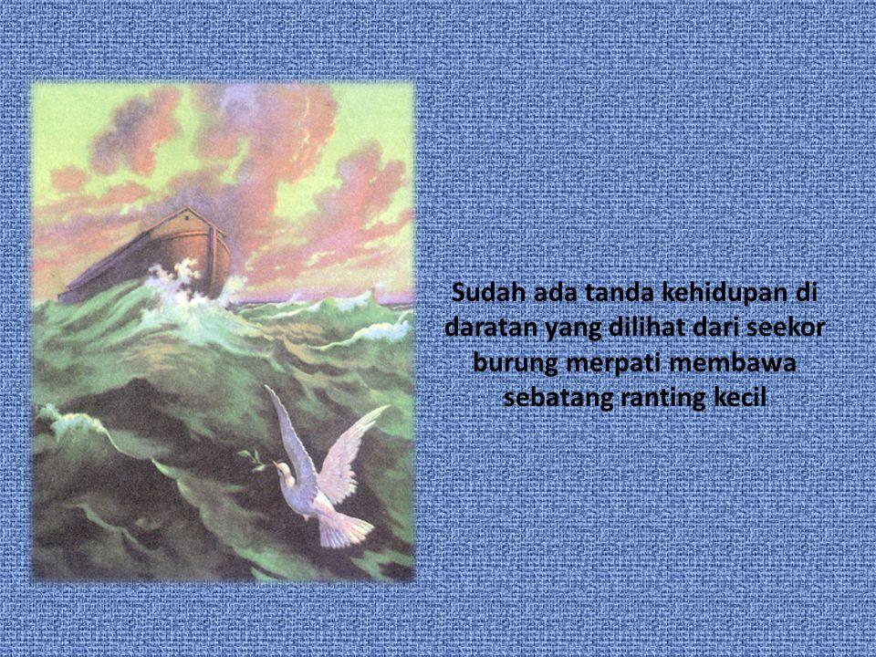Sudah ada tanda kehidupan di daratan yang dilihat dari seekor burung merpati membawa sebatang ranting kecil