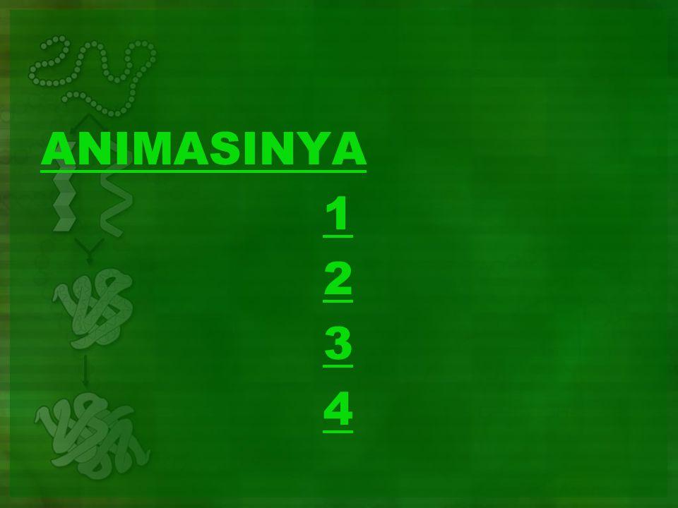 ANIMASINYA 1 2 3 4