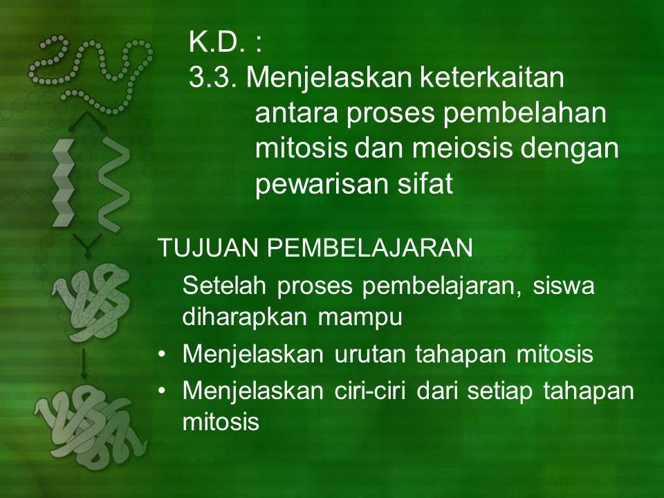 K.D.: 3.3.