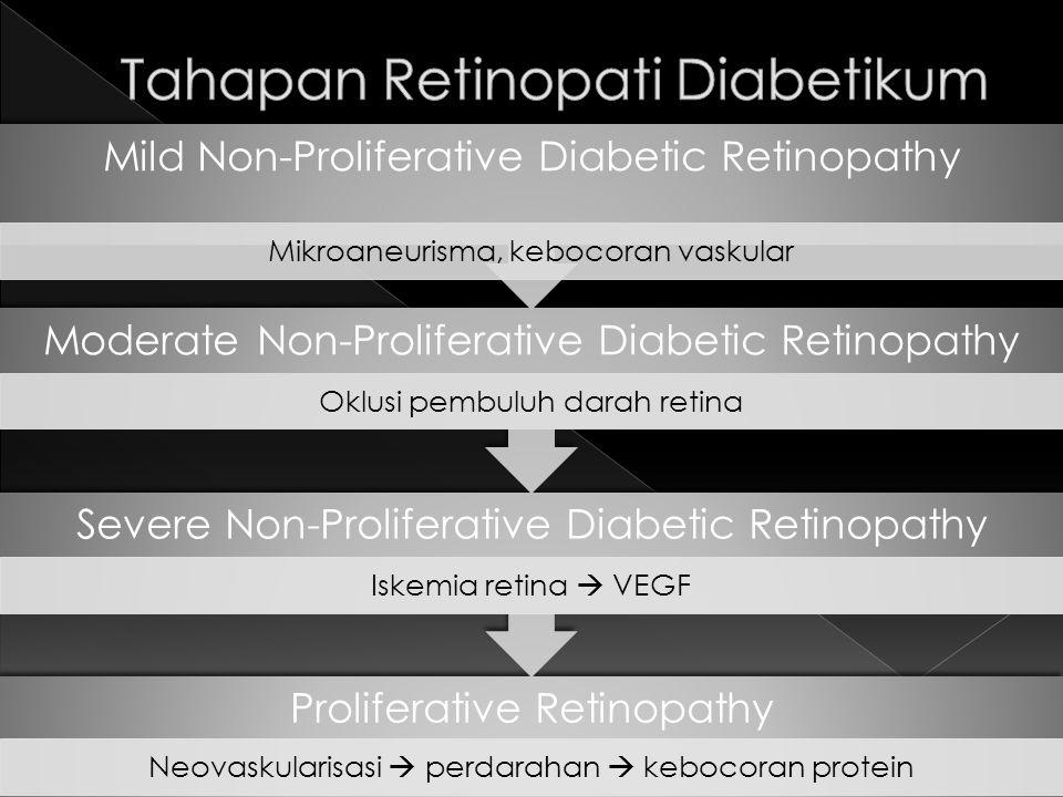 Proliferative Retinopathy Neovaskularisasi  perdarahan  kebocoran protein Severe Non-Proliferative Diabetic Retinopathy Iskemia retina  VEGF Modera