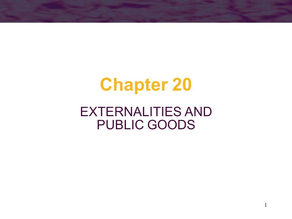 1 Chapter 20 EXTERNALITIES AND PUBLIC GOODS