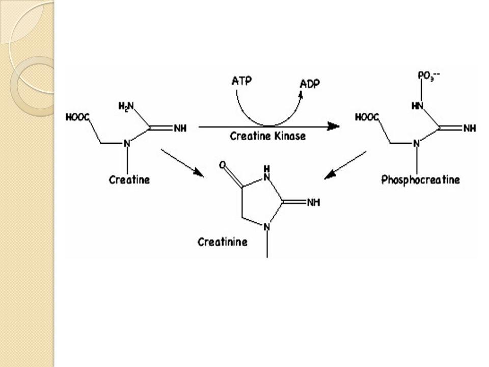 Dasar Metode Kreatinin dapat membentuk warna merah dengan asam pikrat dalam suasana alkali.