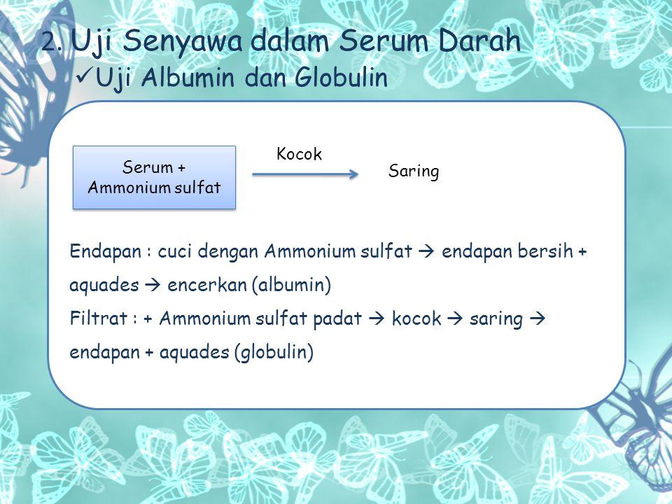 Uji Zat-zat Non-protein Tabung 1 (uji kalsium) : filtrat + Ammonium oksalat Tabung 2 (uji klorida ) : filtrat + AgNO 3 Tabung 3 (uji glukosa) : filtrat + Gliserol + Na 2 CO 3 padat + CuSO 4  panaskan Tabung 4 (uji sulfat) : filtrat + BaCl 2 Serum darah + As.asetat Ambil filtrat dan atur pHnya 5.4 Saring