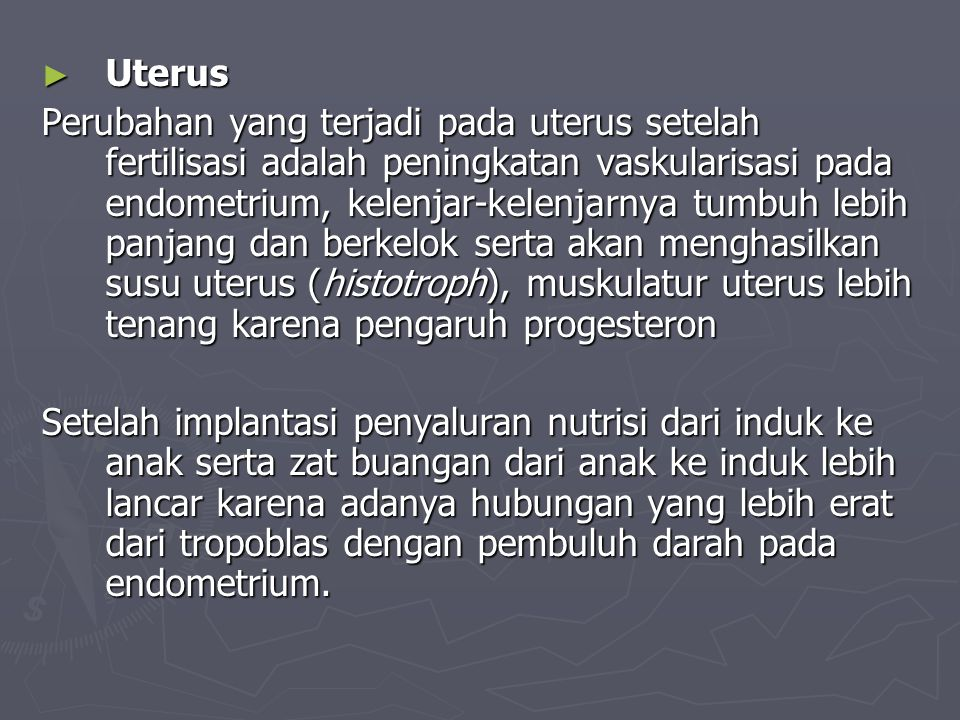 ► Uterus Perubahan yang terjadi pada uterus setelah fertilisasi adalah peningkatan vaskularisasi pada endometrium, kelenjar-kelenjarnya tumbuh lebih panjang dan berkelok serta akan menghasilkan susu uterus (histotroph), muskulatur uterus lebih tenang karena pengaruh progesteron Setelah implantasi penyaluran nutrisi dari induk ke anak serta zat buangan dari anak ke induk lebih lancar karena adanya hubungan yang lebih erat dari tropoblas dengan pembuluh darah pada endometrium.